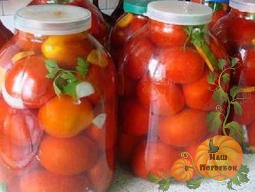 Квашеные помидоры на зиму в банках с горчицей под закатку. Квашеные помидоры на зиму в банках как из бочки