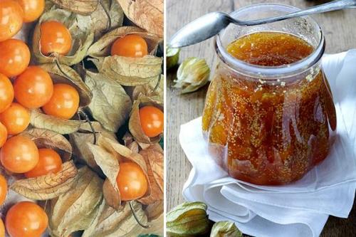 Как сварить варенье из физалиса сливовый джем. Варенье из физалиса с лимоном и мятой