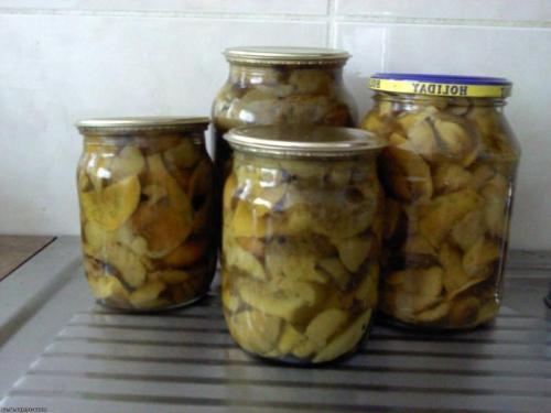 Как вкусно приготовить грибы рядовки. Основные способы соления
