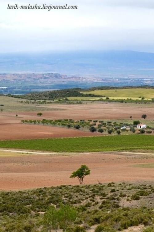 Картошка в духовке в пергаменте. Испанские пейзажи. Картофель, запеченный в пергаменте