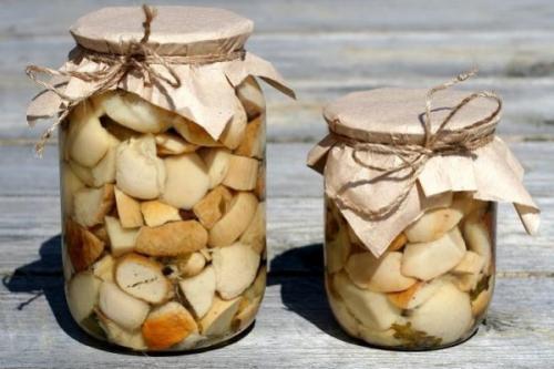 Самые вкусные маринованные белые грибы. Как мариновать белые грибы на зиму в домашних условиях